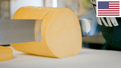 How real Colby cheese is made in Wisconsin using a 100-year-old technique
