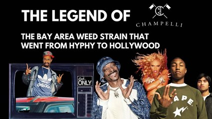 The Story Behind Cali Hip-Hop's Favorite Long-Lost Weed Strain | Cash Only