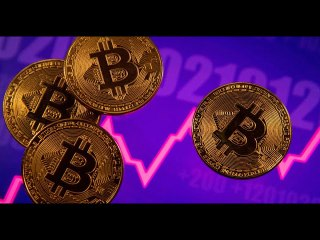 Bitcoin slumps 14% as pullback from record gathers pace   Sun TV News