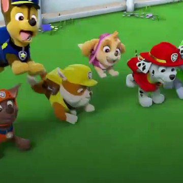 paw patrol PupsSave the Woof an Roll Show  p