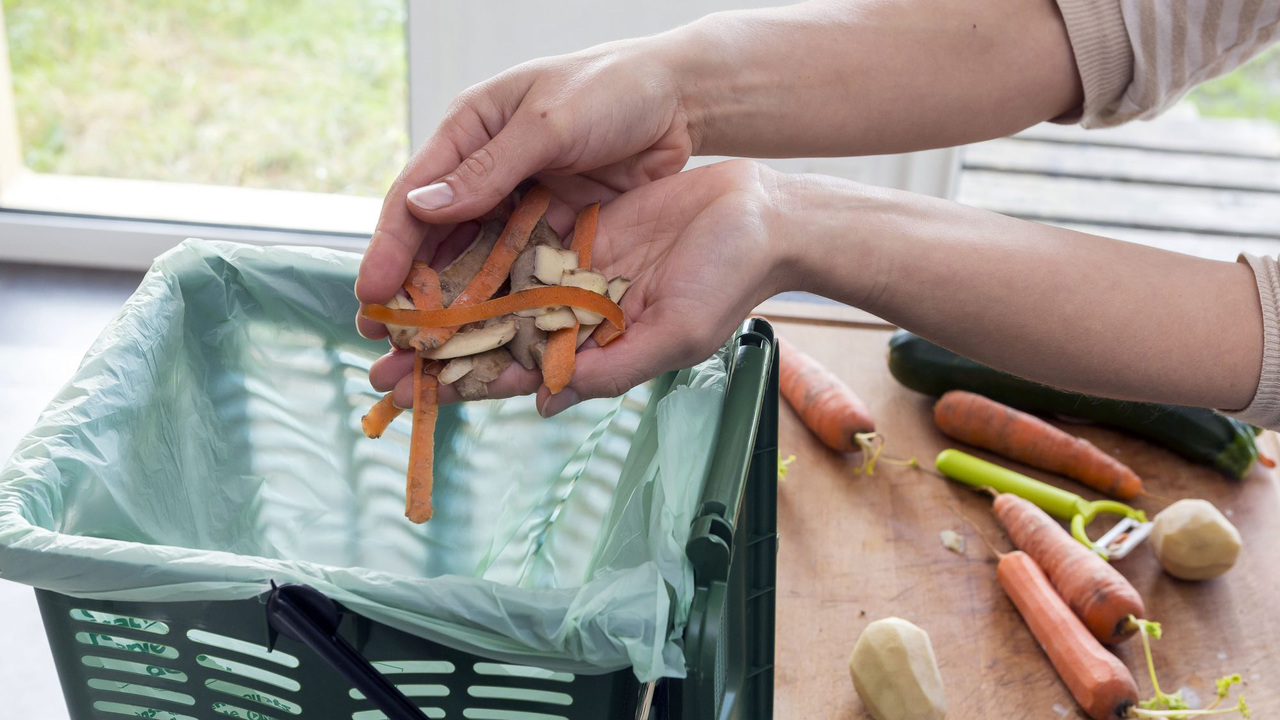 How to Start Composting This Earth Day