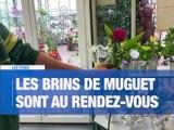 A la Une : 4 étapes de déconfinement / Les bouquets de muguet sont prêts / Le festival La Rue des Artistes s'adapte - Le JT - TL7, Télévision loire 7