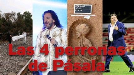 ¡AQUÍ ESTÁN LAS CUATRO PERRONAS DE PÁSALA!