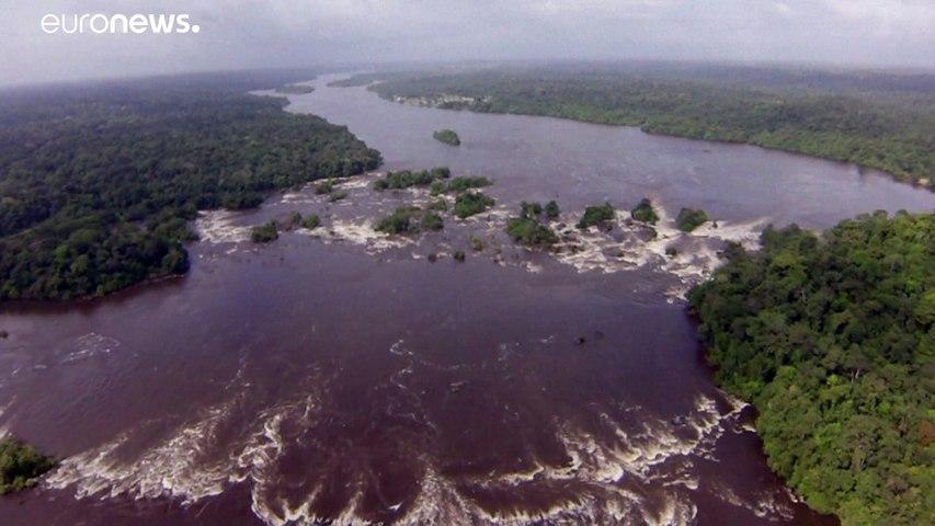 دراسة: غابات الأمازون البرازيلية باتت مصدراً لانبعاث غازات الكربون