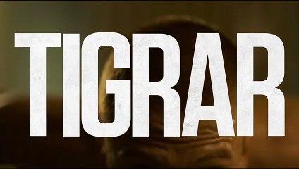 Tigrar Film