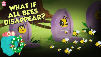 What If All BEES Disappear?   World Without BEES   The Dr Binocs Show   Peekaboo Kidz