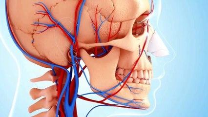 Rinoplastia: ¿Qué sabes sobre este procedimiento quirúrgico ?