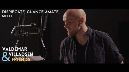 Valdemar Villadsen & Friends - Melli: Dispiegate, guance amate
