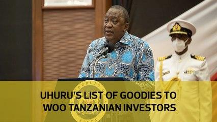 Uhuru's list of goodies to woo Tanzanian investors