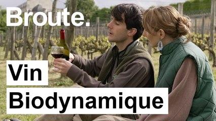 Vous prendrez bien un verre de vin bio dynamique ? - Broute - CANAL+