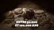 Neuf squelettes de Néandertaliens découverts dans une grotte en Italie