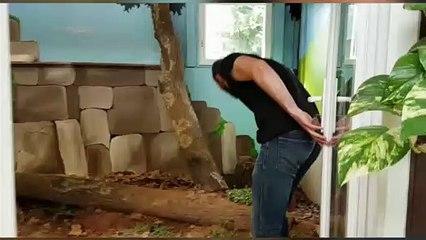 Le nouvel enclos du python Daryl à l'Exotic Park de Lescar