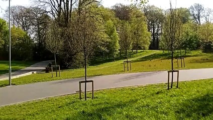 St Columb's Park in Derry