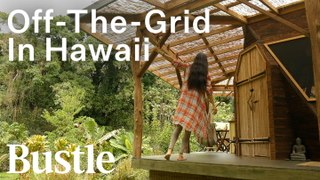 We Live Off The Grid In Hawaii