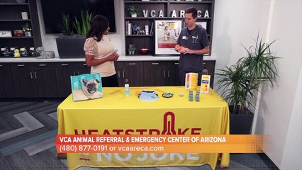 VCA Animal Referral and Emergency Center of Arizona has some safety tips for hiking with your pet