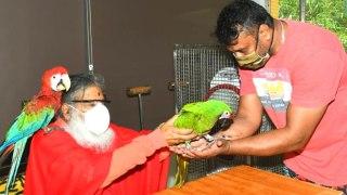 ಶುಕವನದಲ್ಲಿ ಮುದ್ದು ಗಿಳಿಗಳ ಜೊತೆ ಕಾಲ ಕಳೆದ ಡಿ ಬಾಸ್ | Filmibeat Kannada