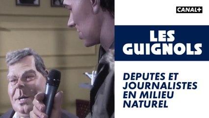 Députés et journalistes en milieu naturel - Les Guignols - CANAL+