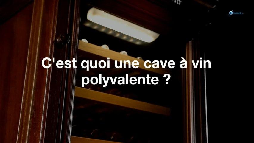 C'est quoi une cave à vin polyvalente ?