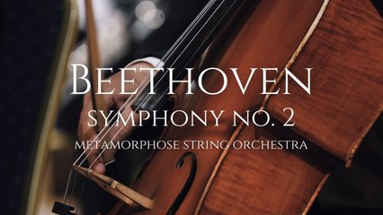 Metamorphose String Orchestra - Beethoven: Symphony No. 2 in D major, Op. 36
