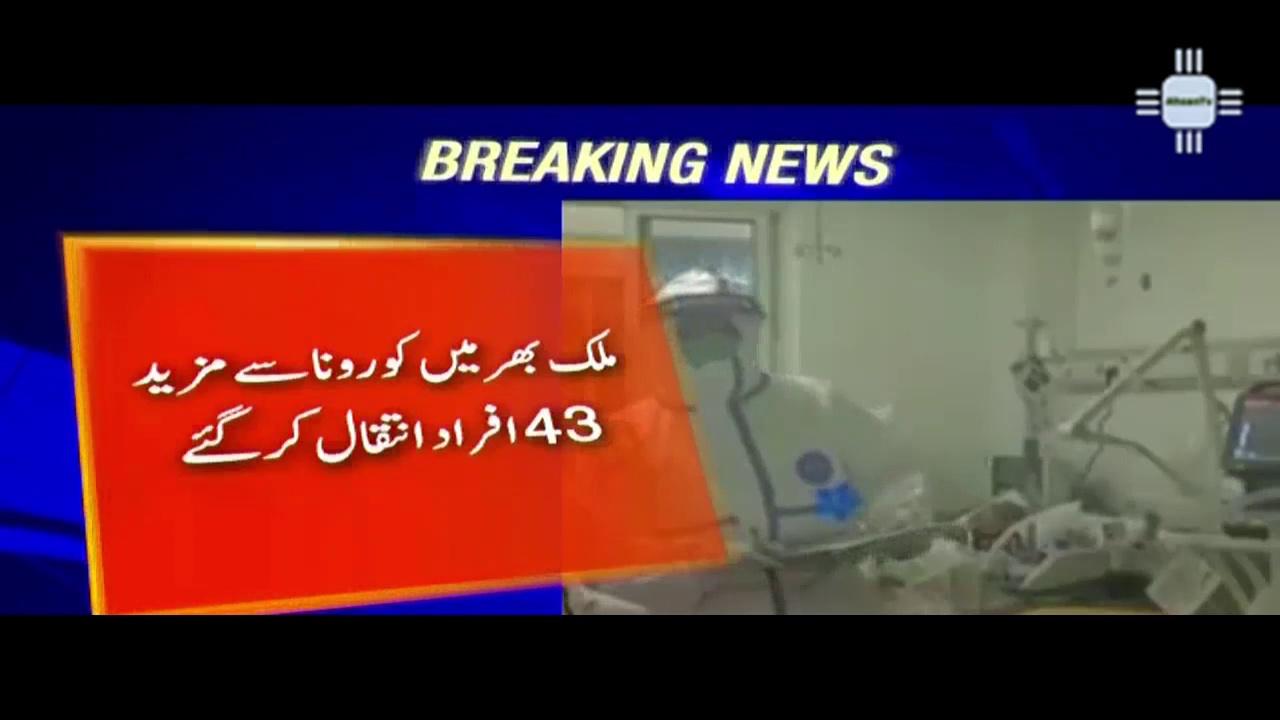 Pakistan COVID-19 Update – 31st May 2021 – COVID NEWS