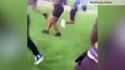 Hyde Park stabbing - Man brutally attacked among park revellers