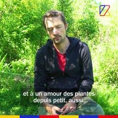 La forêt à manger | REPORTAGE