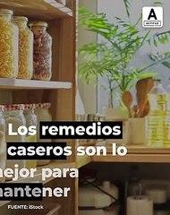 El truco del bicarbonato para plantas bonitas y libres de plagas.