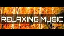 Relaxing music | sleeping music | piano music  |relaxing music | calming music | INFI MUSIC