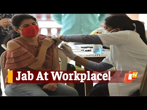 Odisha Issues Guidelines For Covid-19 Vaccination At Workplaces   OTV News