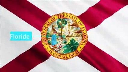 États-Unis : les drapeaux des 50 États