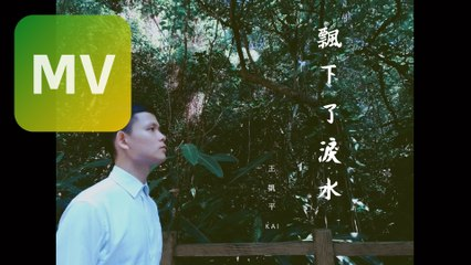 王凱平 Kai《飄下了淚水 Rain》Official Lyrics MV
