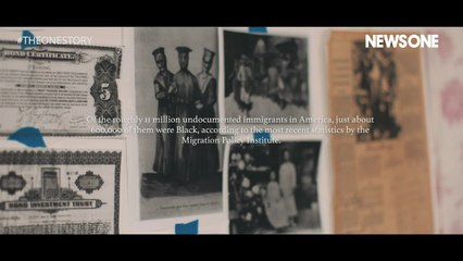 The Plight of Black Immigrants In America- Part 1: Black Alliance for Just Immigration (BAJI) | The One Story