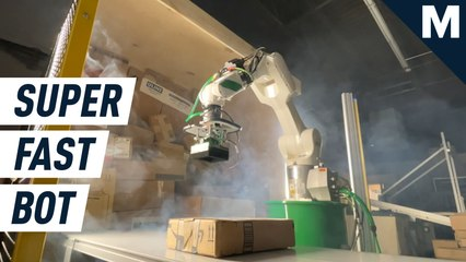 'Dill' is a super-fast robot that can unload 1600 boxes an hour