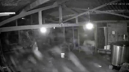 Vídeo capta imagens de Lázaro Barbosa em fazenda localizada em Edilândia