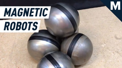 Like a miniature Voltron, these magnetic sphere robots can assemble and move as one