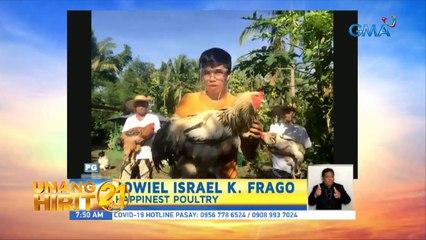 Unang Hirit: Giant Chickens sa 'Unang Hirit'!
