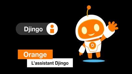 L'assistant Djingo - Orange