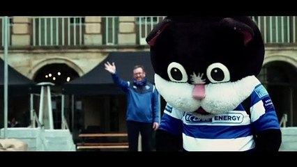Watch as former Fax mascot Halicat finds purrfect new home
