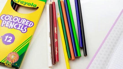 FUN WAYS TO SNEAK GADGETS INTO CLASS Cool School Pranks And Hacks By 123 GO! GOLD