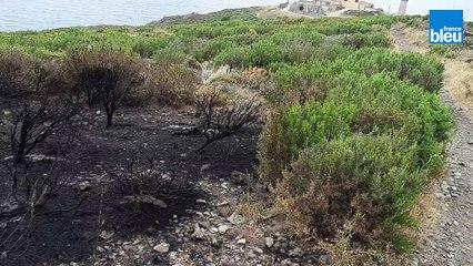 La désolation à Port-Vendres, paysage lunaire après l'incendie