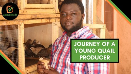 Burkina Faso: Journey of a young quail producer