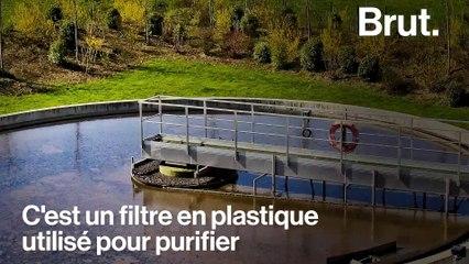 Une pollution massive aux biomédias menace les plages françaises
