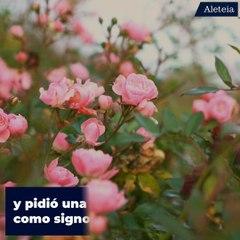 La Novena de las Rosas y santa Teresita de Lisieux