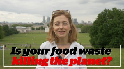 Food waste: Madeleine Cuff explores why discarded food is such a significant driver of climate change
