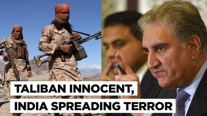 Pakistan Accuses India Of Terrorism While Giving A Clean Chit To Taliban In Afghanistan