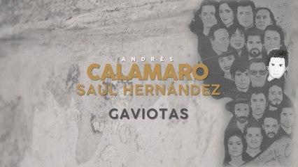 Andrés Calamaro - Gaviotas
