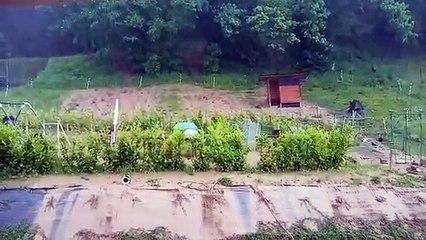 Lustin : coulées de boues sur les maisons de la rue du Bois Josse (3)