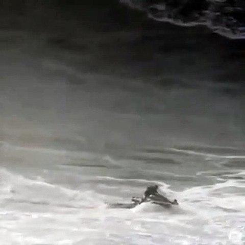 Un surfeur sauvé à temps