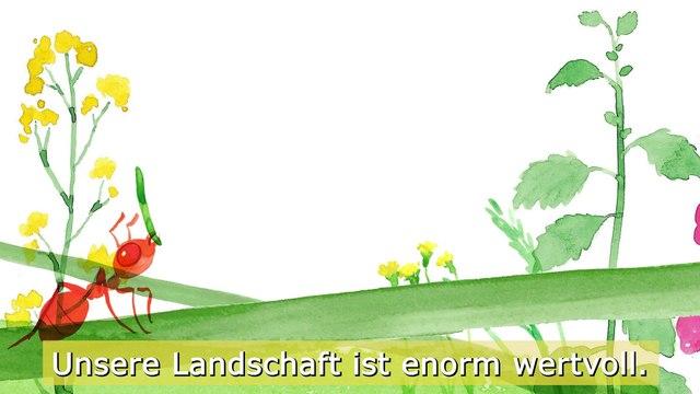 Landschaft ist für alle wichtig