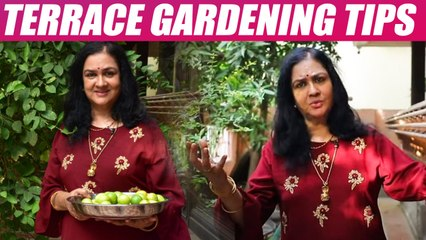 நடிகை ஊர்வசியின் வீட்டுத்தோட்ட டிப்ஸ்! Actress Urvasi Terrace gardening tips